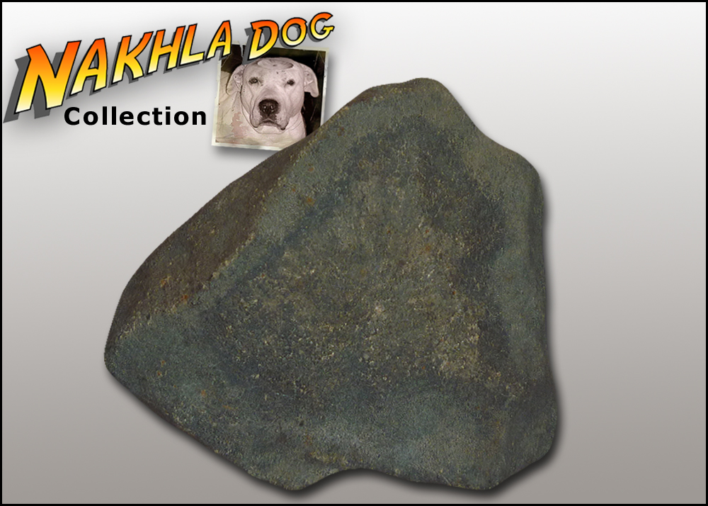 nakhla dog meteorite collection